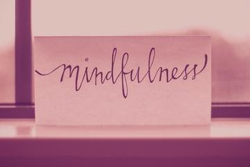 Metta FLows Mindfulness MBSR